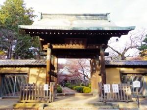 豪徳寺(東京)