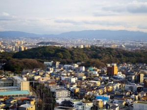 堺市役所から見た仁徳天皇陵